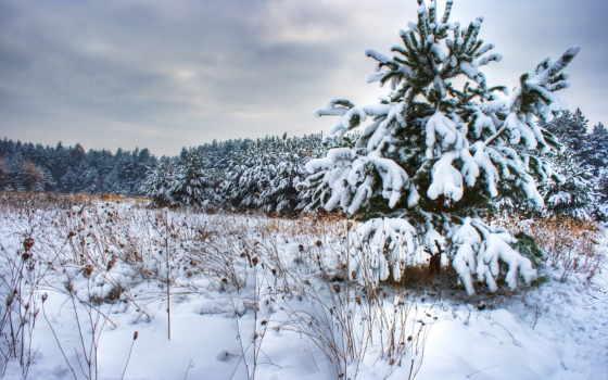 landscape, winter, природа, пейзажи,