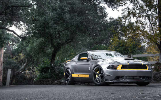 ford, mustang, silvery, тюнинг, silver, muscle, parede, кар,