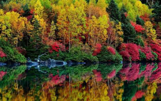 осень, water, природа Фон № 135104 разрешение 2048x1338