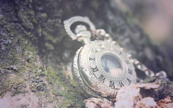 часы, макро, цепь, листва, римские, цифры, камни,