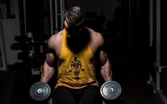 мужчины, фитнес, мышцы, стоковое, hall, coach, коллекциях, гантели, коллекцию, посмотрите, яndex,