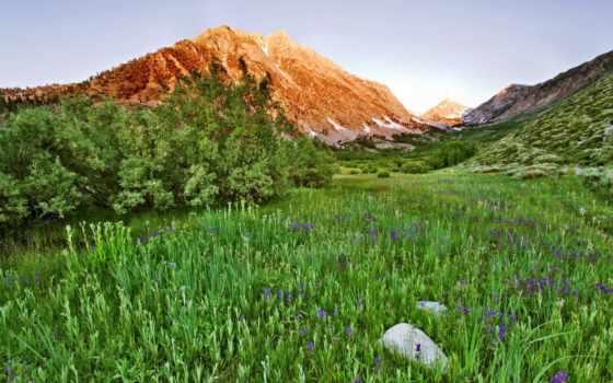 california, природа