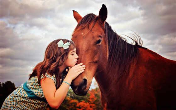 лошадь, devochka, оптом, вышивки, лошадью, лошади, схема,