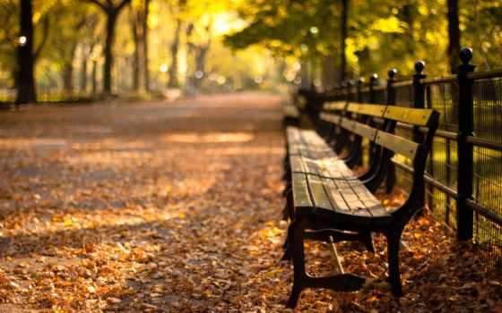 нью, york, new, park, центральный, закат, осень,