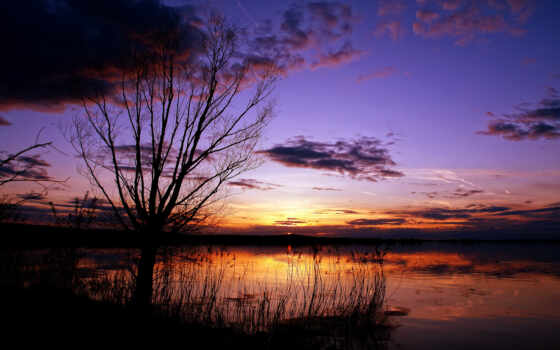 отражение, небо, дерево, облако, упадок, outline, природа, weightless, песочница, озеро