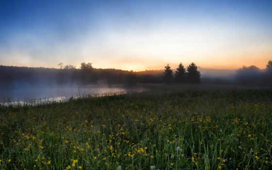 утро, туман, река