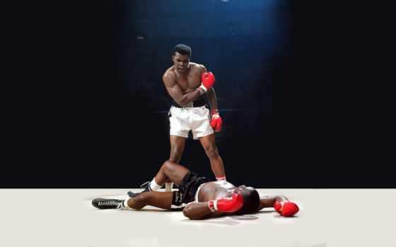boxing, спорт, нокаут, ринг, impact, ali,