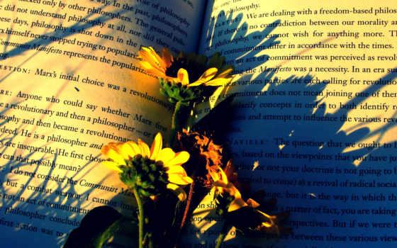 книга, cvety, книге, раскрытой, надпись, бумага, лежат, страницы, страница,