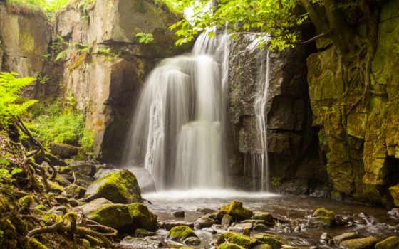 водопад, con, переполох, уровни, скалы, птичий, лес, roots,