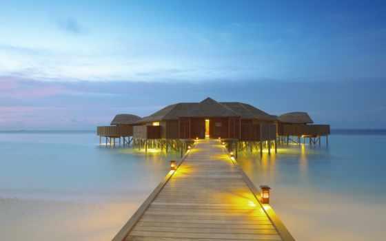 resort, пляж, спа, lily, maldives, wild, planet, wayanad, huvahendhoo, блог,