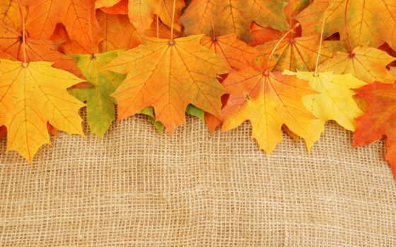осень, ценопад, base, отдыха, share, камянка, всегда, высоте,
