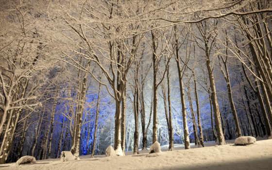winter, природа, trees, лес, снег, река, woods, нояб, пасть,