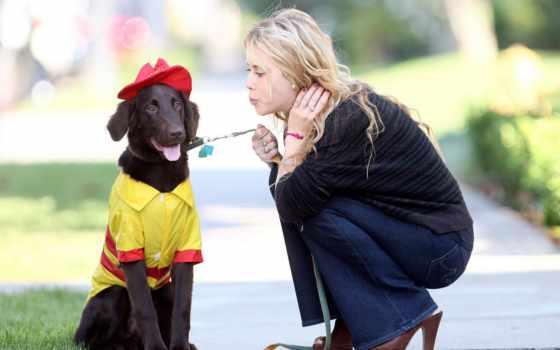 собака, девушка, high, красивое, два, пудель, сайте, ruanava,