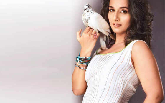 vidya, balan, saree, white,