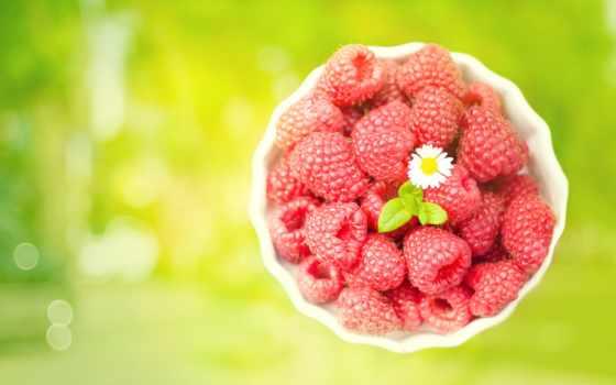 малина, цветочек, ягоды,