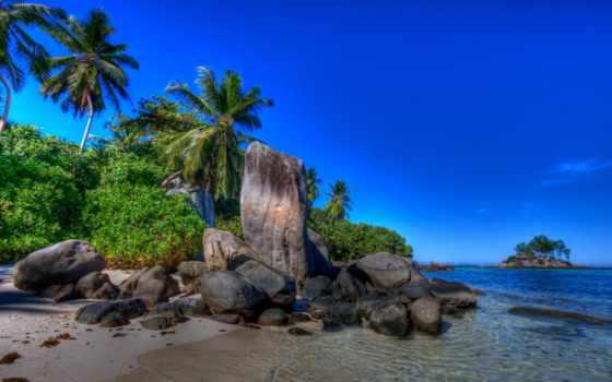 природы, море, landscape, летом, небо, пляж, пальмы, природа, summer,