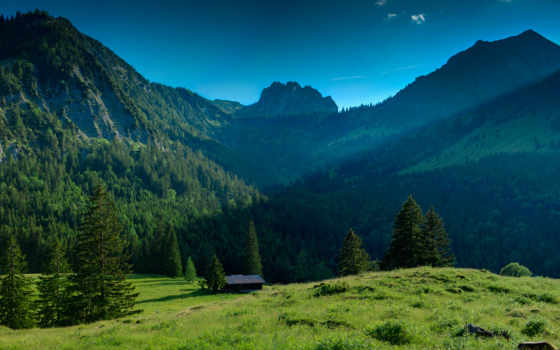 горы, лес, mountains