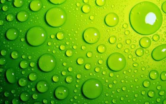 капли, water, зелёный, роса, макро, waters, лист,