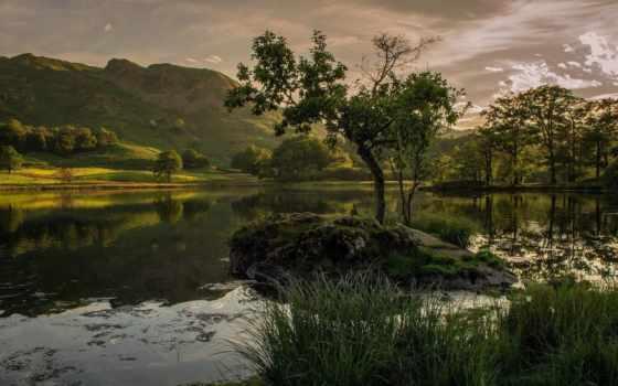 природа, тело, места, качества, рвется, разрешением, где, soul, trees,