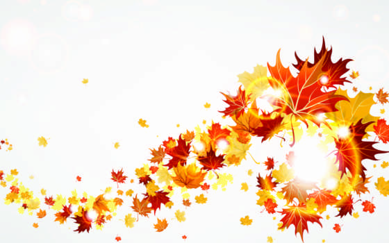 осень, листья, желтые