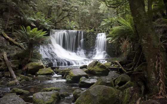 falls, осень, подкова, лес, random, tasmania, озеро,