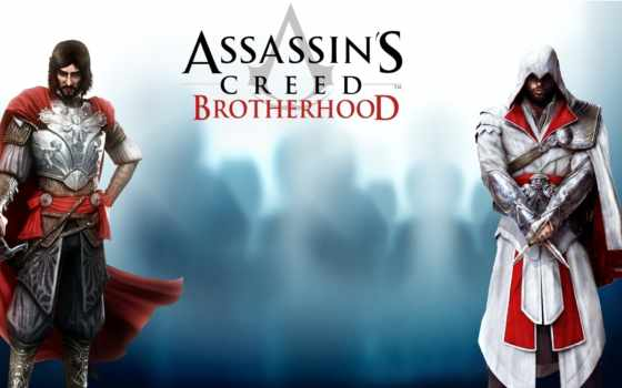 creed, brotherhood, assassin