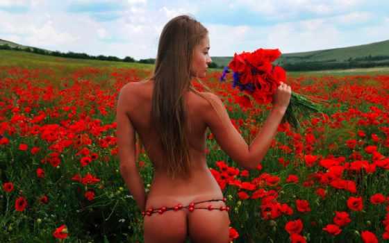 маки, красные, поле, девушка, попка, цветы,