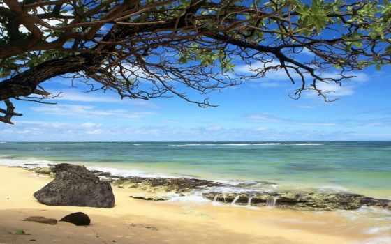 море, побережье, моря, песок, waves, reki, самое, глубокое, большое, камни, чёрного,