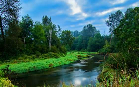 канада, british, columbia, лес, река, park, озеро, summer, maple, канадский,
