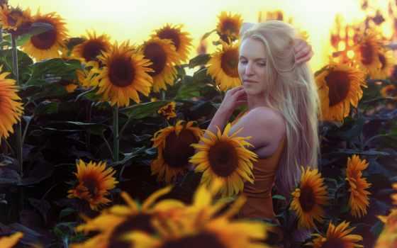 девушка, подсолнухи, sunflowers, martha, devushki, desktop, summer, солнечный,