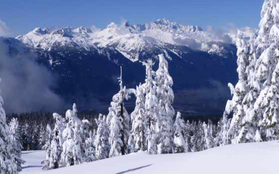 winter, free, gb, zenfone, asus, снег,
