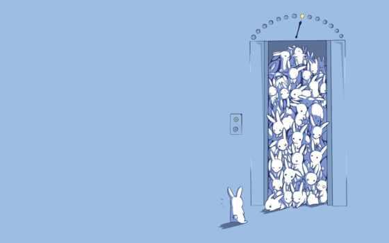 много, рисунок, удивление, кролики, зайцы, лифт, bunnies, minimalistic, elevators, bunny, this,
