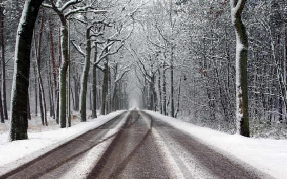дорога, снег, snowy, winter, tracks, trees, stock, vectors, free,