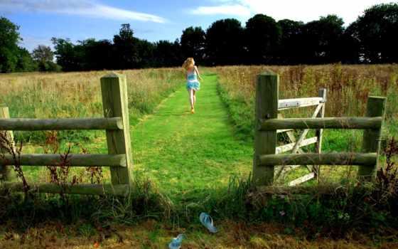 лес, summer, трава, поле, девушка, полу,