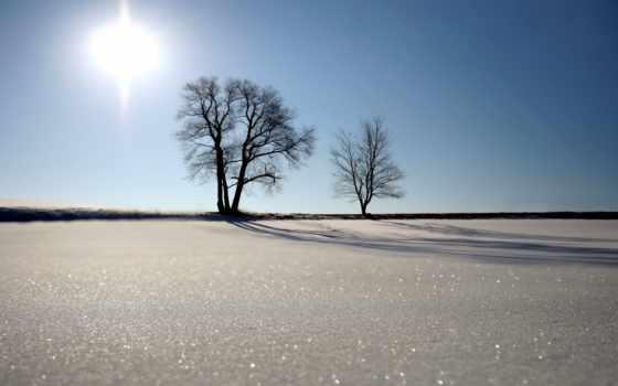 большой, free, winter, природа, красивый, shirokoformatnyi, снег