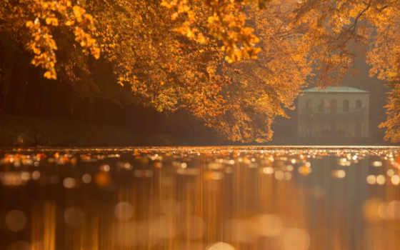 осень, пруд, дом