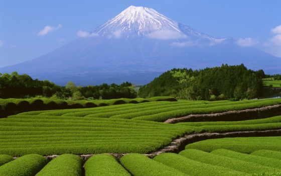 зелёный, гора, world, mountains, японии, япония, mount, дневник, фудзи, горы,
