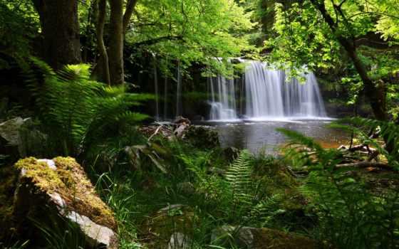 англия, park, national, маяки, brecon, водопад, лес, папоротник, биконс,