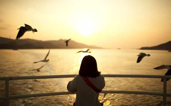 птицы, чайки, девушка, настроения, закат, настроение, water, вечер, город, птица,