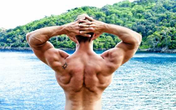 мышцы, swimming, плечи, тату,