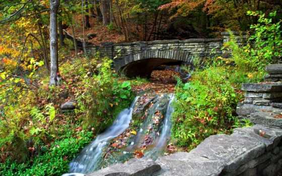 мост, лес, река