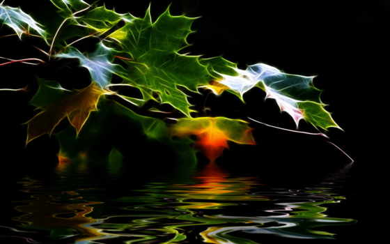 фон, leaf, fractal, powerpoint, пост, отражение, cartoon, estudo, abstract