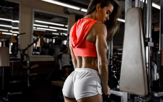 top, спорт, gym, images, sports, дрессировщик,