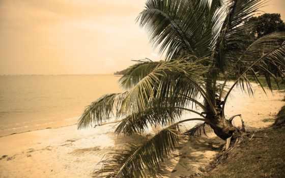 flickr, пейзажи -, favorites, пляж, samba, vepik, мэй, photos, небо,
