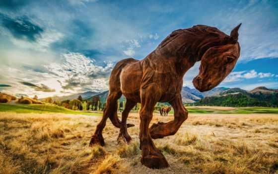 лошадь, beat, kopyto