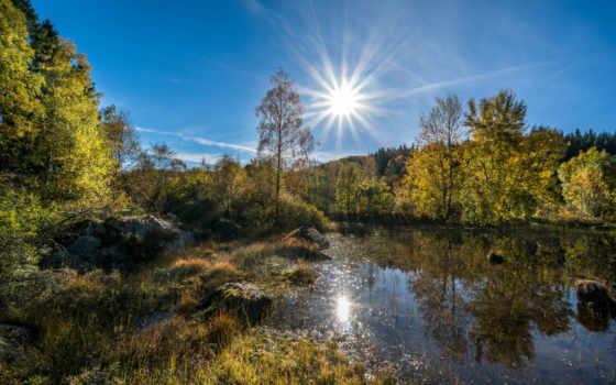 природа, озеро, лесное, science, trees, лес,