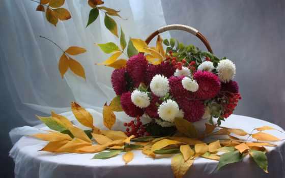cvety, осенние, натюрморт, астры, листва, букет, осень, корзина, красивые, рабочие,