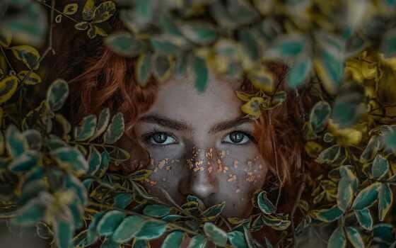 девушка, portrait, bush, глаз, глаза, женщина