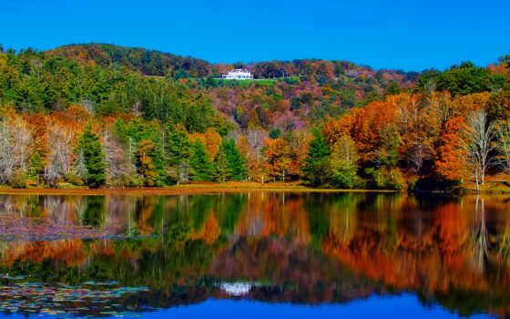 осень, лес, озеро