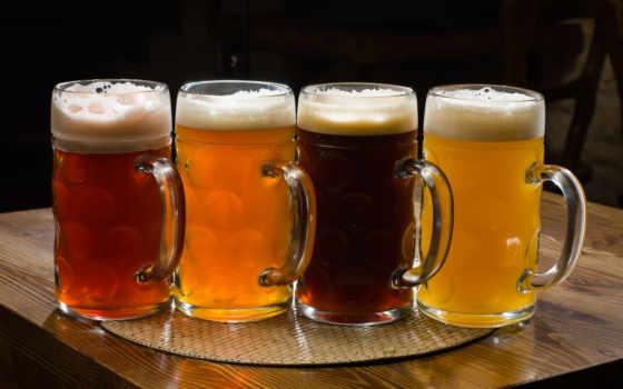 пиво, пиву, закуски